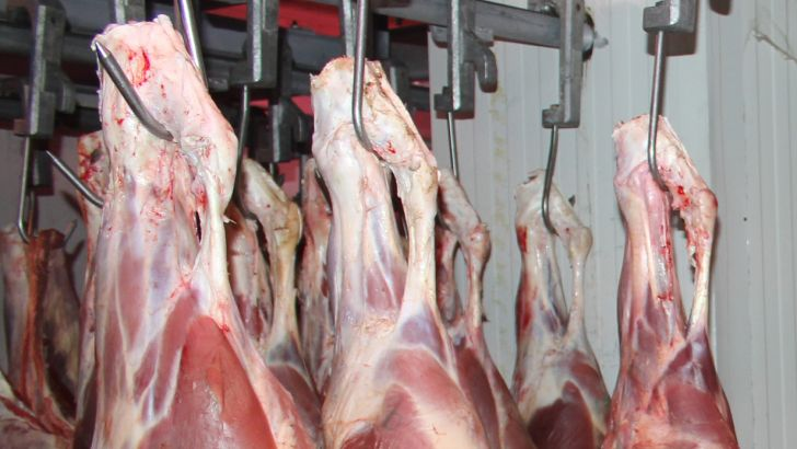 ۲۶۰ شرکت وارد کننده گوشت قرمز هستند