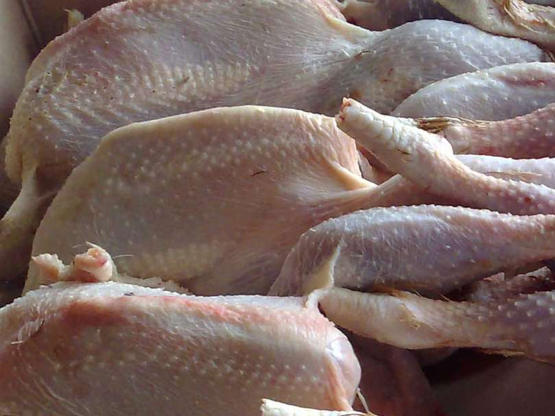 طبق روال هر ساله قیمت مرغ در فصل پاییز کاهش می یابد