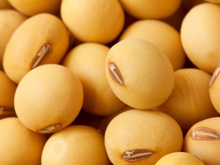 ممنوعیت اختصاص ارز مبادلهای برای واردات کنجاله سویا لغو شد