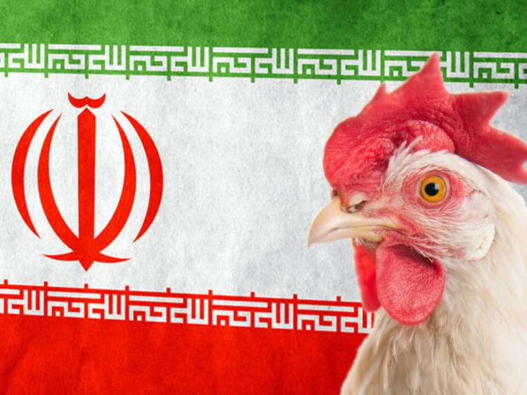 ایران یک کشور صادر کننده نیست