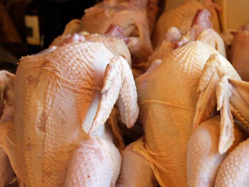 ۲۱۸ تن گوشت مرغ از استان زنجان به عراق صادر شد