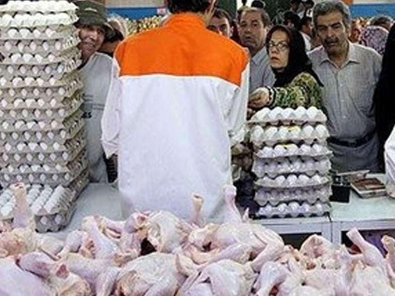 عرضه مرغ و تخممرغ دولتی در تهران