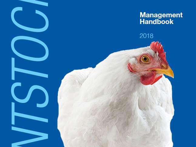 راهنمای پرورش مرغ مادر گوشتی راس 308