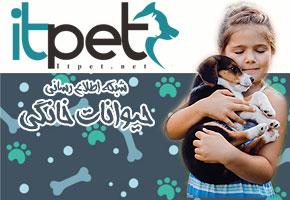 ITPet.net