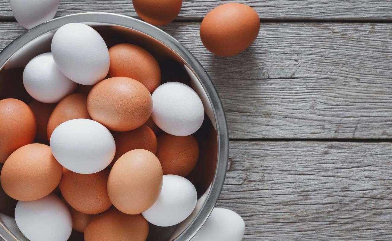 احتمال وضع عوارض صادراتی بر تخم مرغ