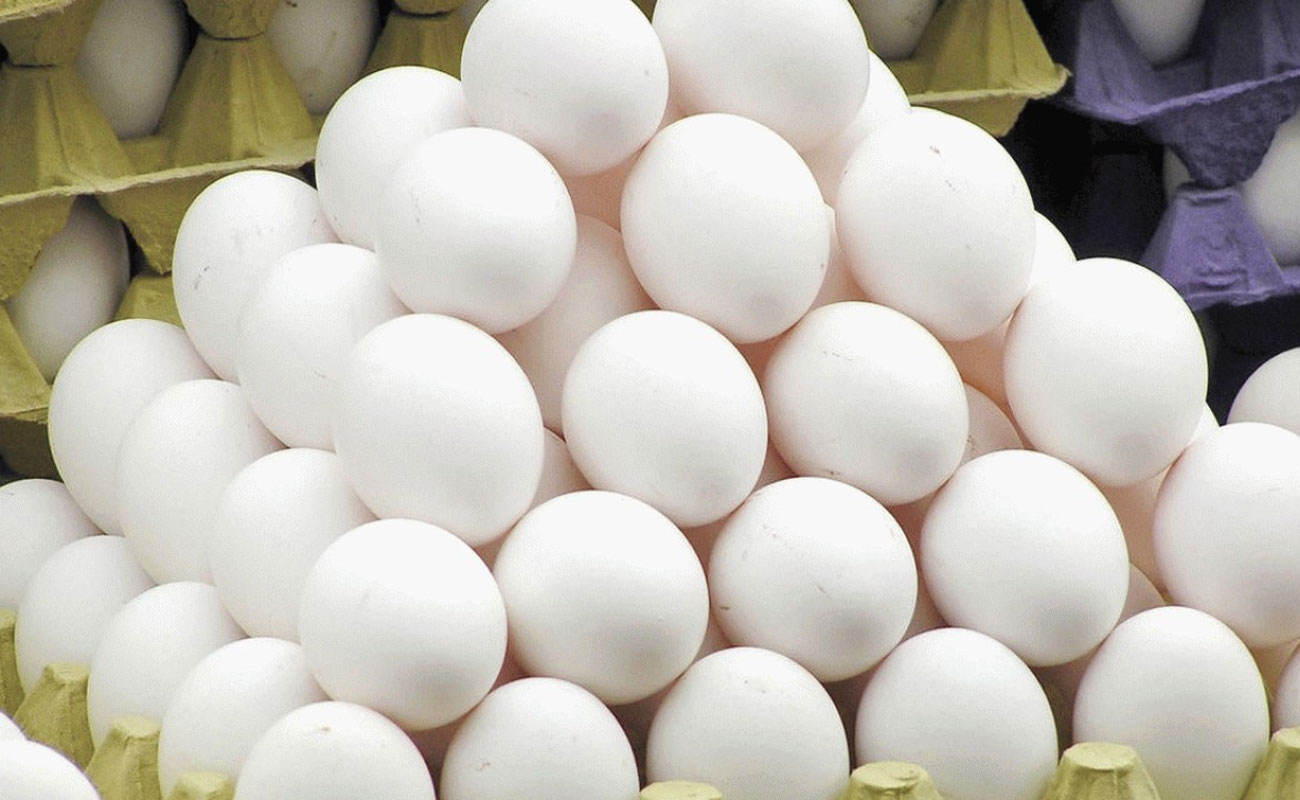 چرا قیمت تخم مرغ دوباره افزایش یافت/ بازارگرمی تولید کنندگان یا بی خبری مسئولان