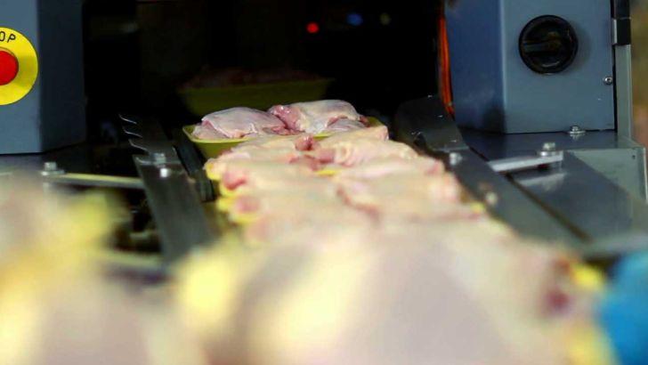 سرانه مصرف مرغ در ایران از متوسط جهانی بیشتر شد