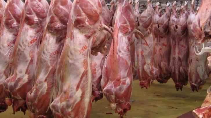 حجتی: واردات گوشت تا متعادل شدن قیمت ها ادامه دارد
