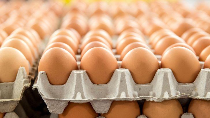 واردات تخممرغ با مجوز وزارت صنعت!