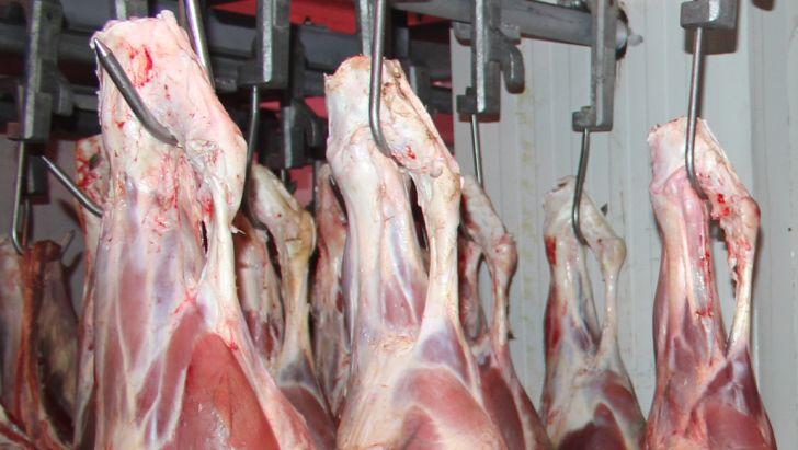 ردپای قاچاق در گرانی گوشت قرمز