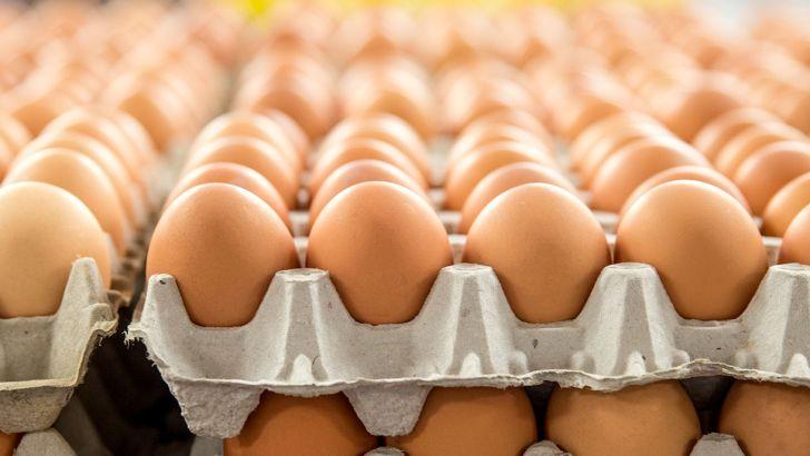 افزایش تقاضا بر نوسان قیمت تخم مرغ در بازار دامن زد