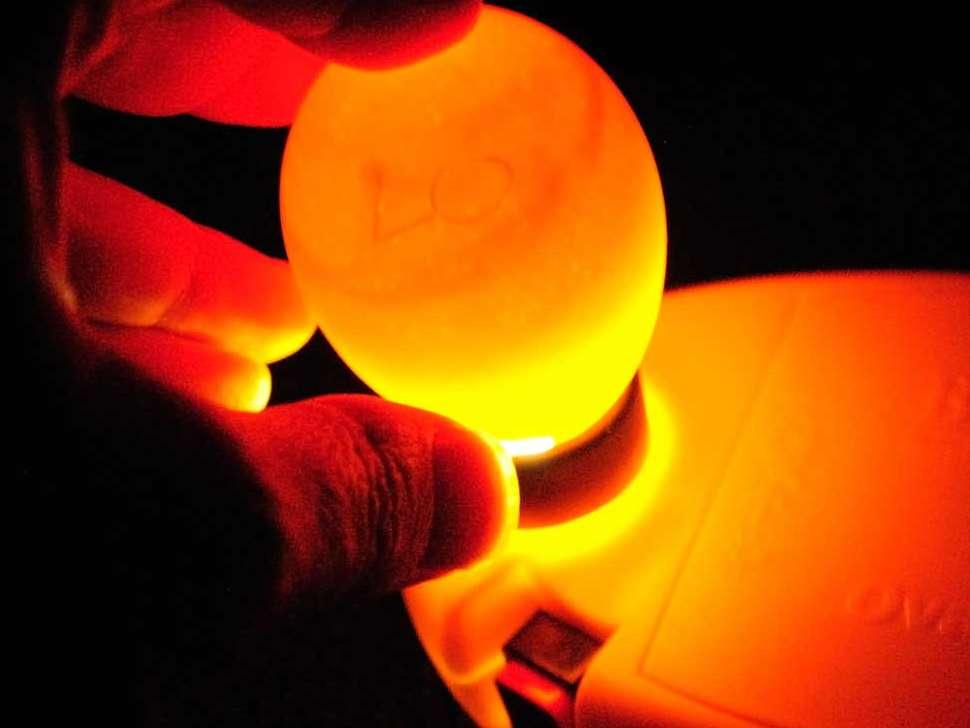 تکنولوژی های جدید برای تشخیص جنسیت در درون تخم مرغ