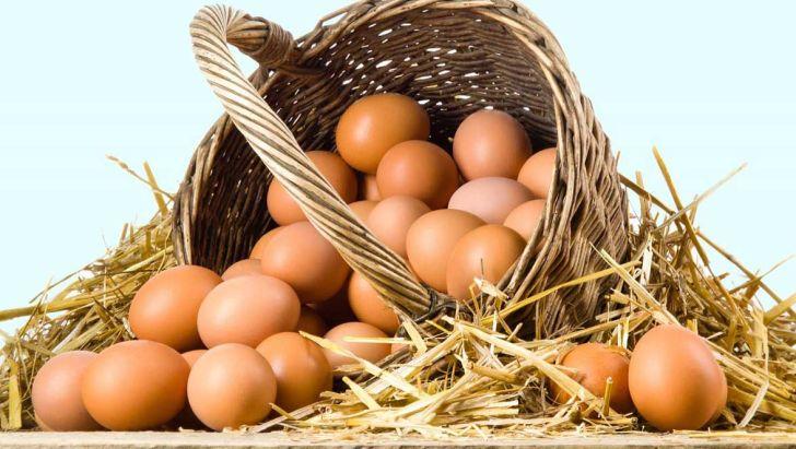 روند کاهشی قیمت تخممرغ در هفته گذشته