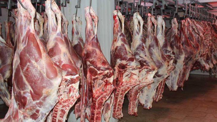 ادامه روند کاهش قیمت گوشت قرمز