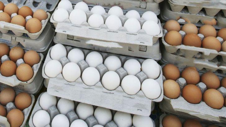 تخم مرغ به کیلویی ۵۰۰۰ تومان رسید