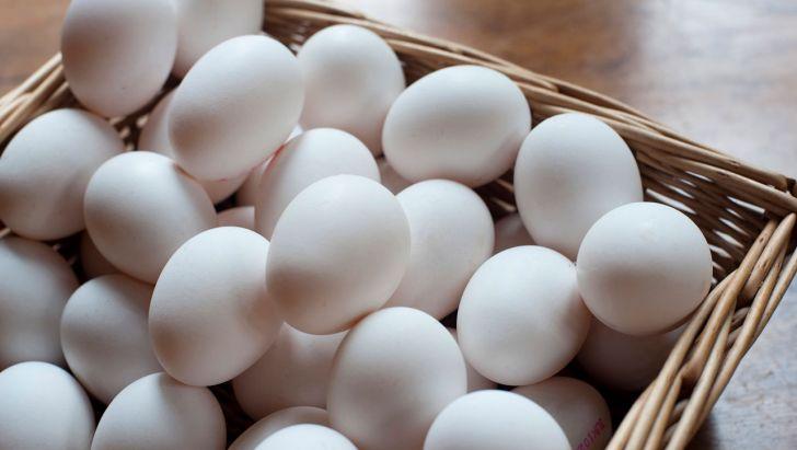 قیمت تخم مرغ افزایش یافت