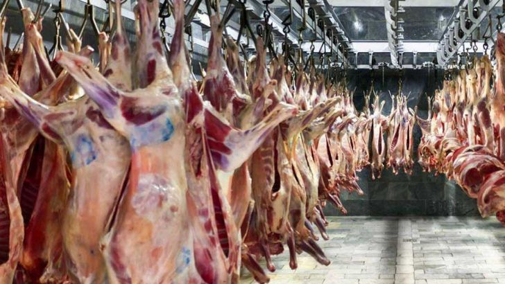 دپو گوشت قرمز در بنادر صحت ندارد