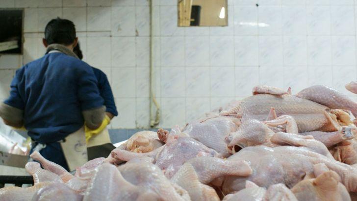 تکذیب توزیع گوشت مرغ با کارت ملی