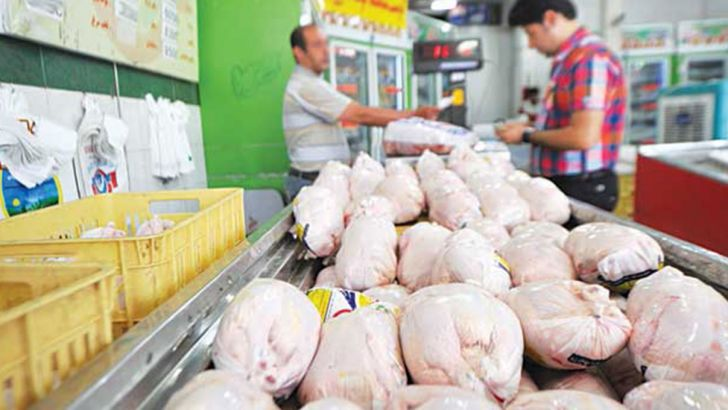 اتحادیه مرغداران: افزایش قیمت جوجه و گوشت مرغ توسط مرغداران تخلف است