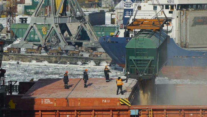 دستور توقف واردات ذرتهای آلوده به کشور