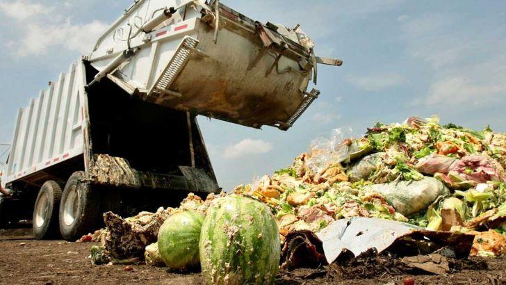 ارزش پسماند میوه و تره بار برای تبدیل به خوراک دام