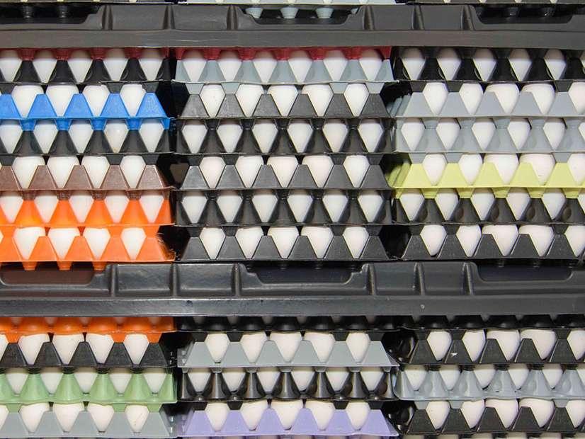 مازاد تولید تخم مرغ دردسر ساز شد