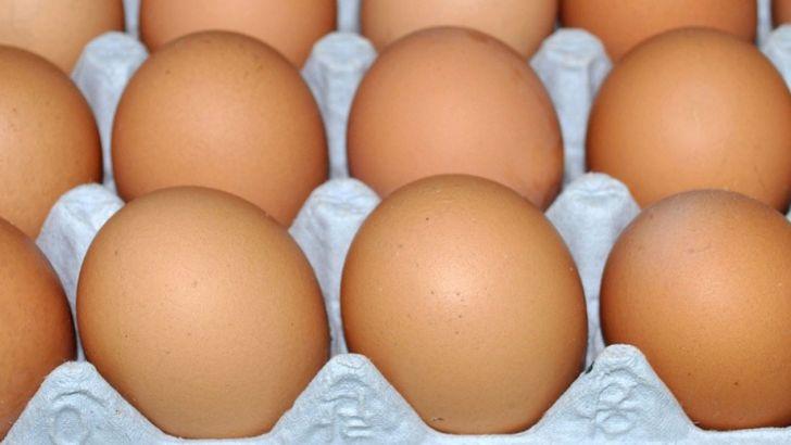 همه تخممرغ های قهوهای بازار، بومی نیست