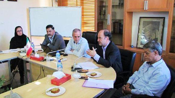 صنعت مرغداری استان کرمان در تسخیر دلالان است