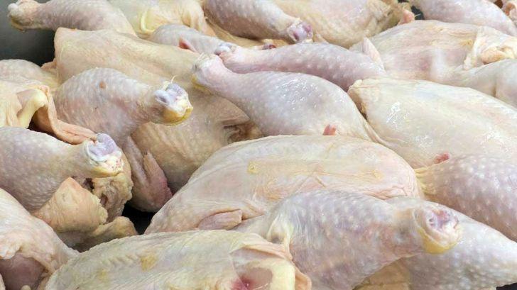 ورود شرکت بازرگانی دولتی به خرید مرغ مازاد