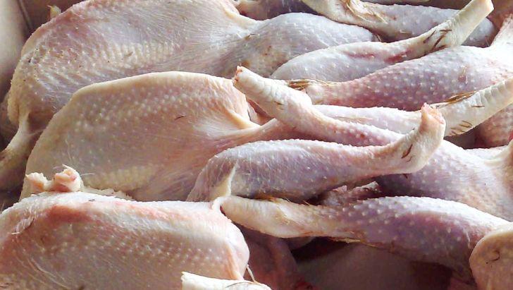 خودکفایی کشور در تولید گوشت مرغ