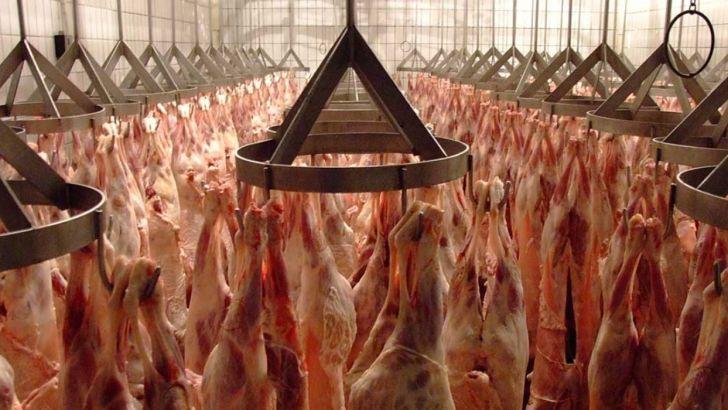 ذخایر راهبردی و وضع موجود در خصوص گوشت، مناسب است
