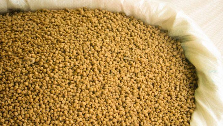 کارخانه کنسانتره تولید خوراک دام در استان مرکزی به بهره برداری می رسد