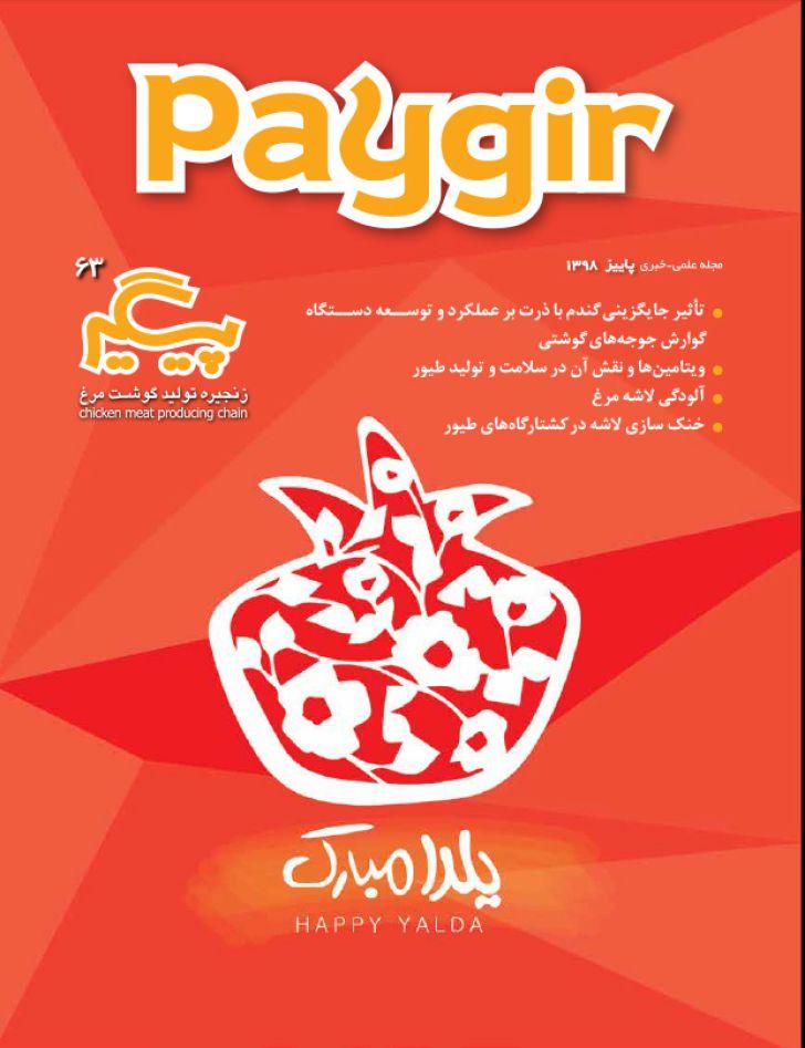دانلود مجله پیگیر - شماره 63