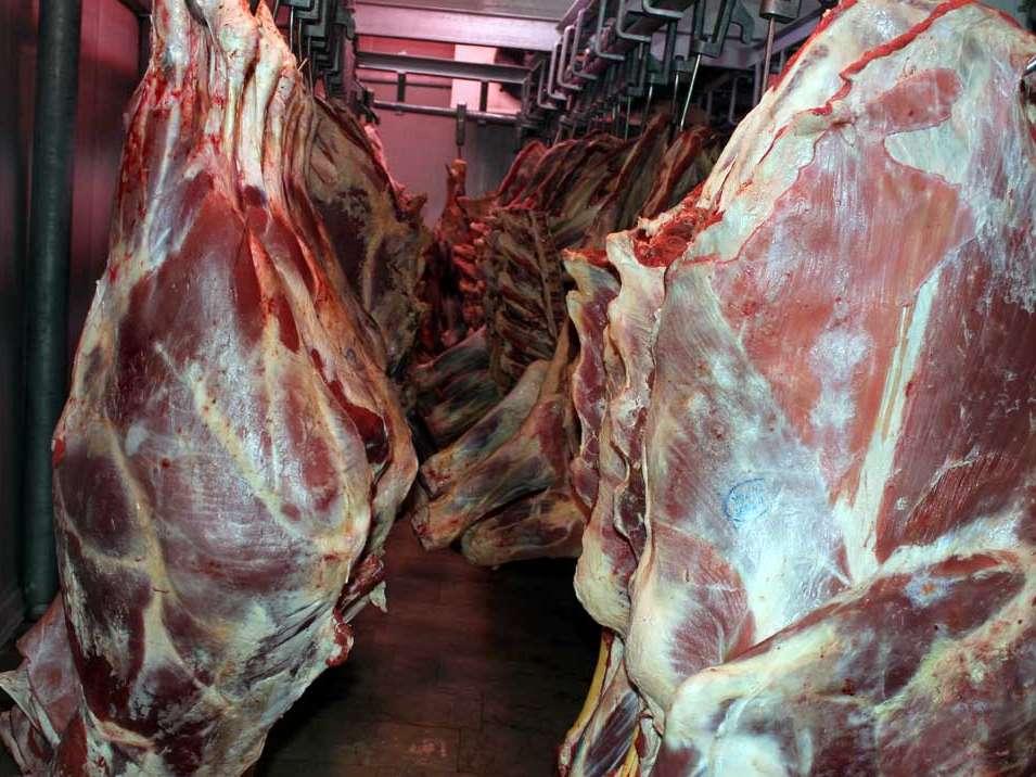 واردات گوشت فعلا متوقف میشود