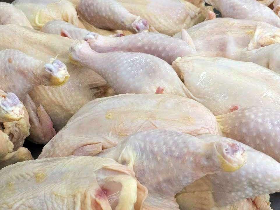 چالش قیمت مرغ داریم