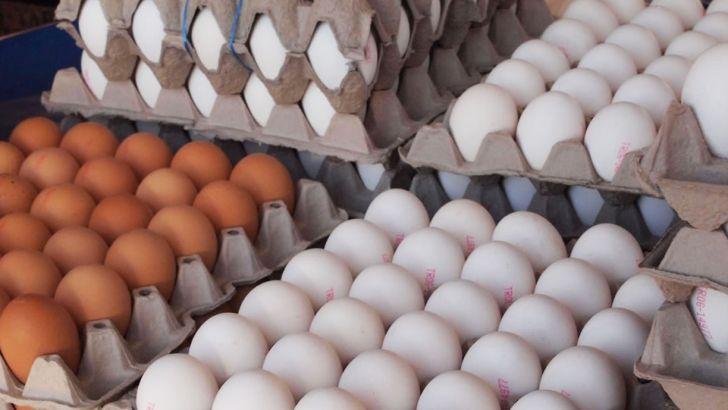 یک هزار و ۹۳ تن تخم مرغ از خراسان جنوبی صادر شد
