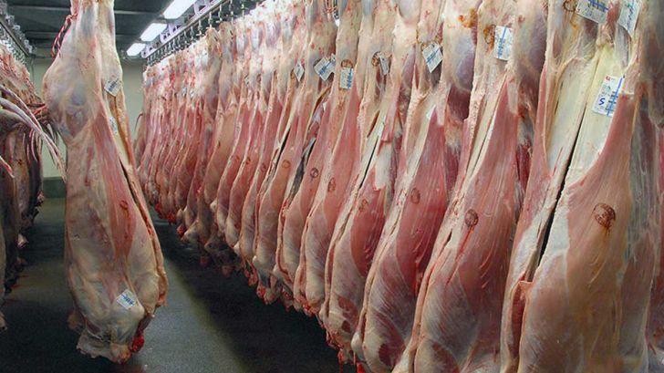 تولید گوشت قرمز از مصرف پیش افتاد