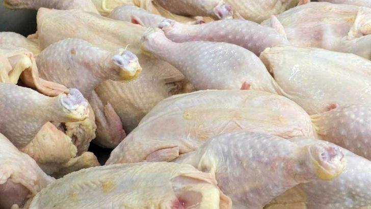 افزایش قیمت مرغ نخواهیم داشت