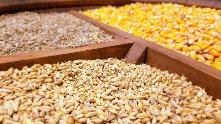 جواب انجمن صنایع خوراک دام، طیور و آبزیان به یک گزارش