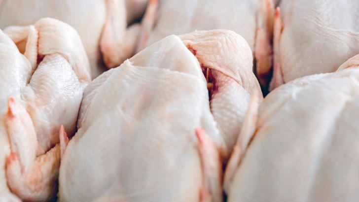 دولت نتوانست در بازار مرغ ثبات ایجاد کند