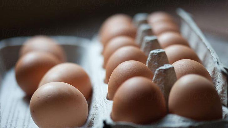 صادرات تخم مرغ به ۶ هزار تن رسید