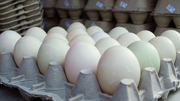 حال بازار تخم مرغ خوش نیست