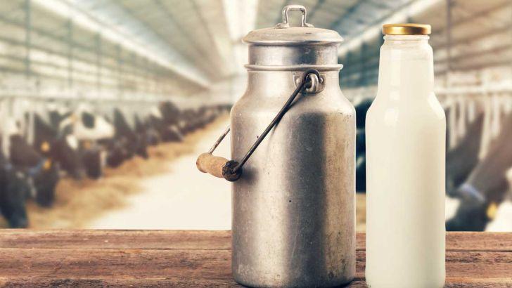 قیمت واقعی شیرخام بیش از ۲۹۰۰ تومان است