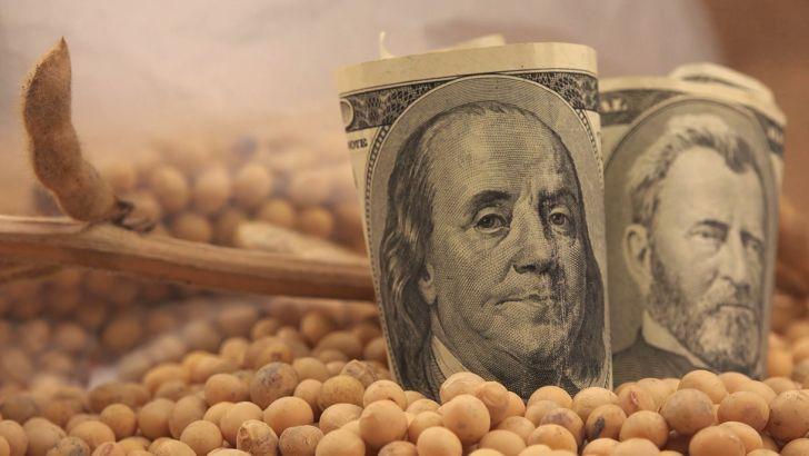 توزیع ارز واردات نهاده ها به صورت گزینشی و بدون ضابطه