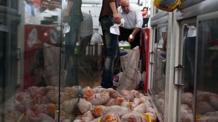 کنترل نبض بازار گوشت مرغ با حذف دلالان نهاده دامی