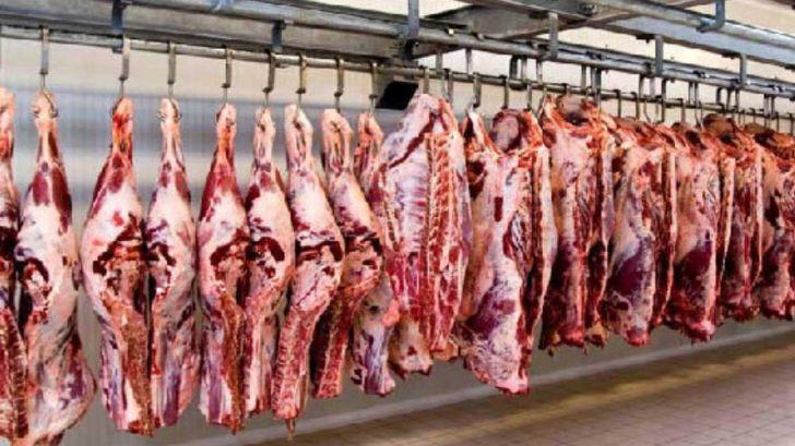 تناقض تولید و قیمت گوشت در آشفته بازار دام