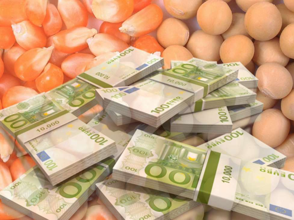 تصمیمی برای حذف ارز دولتی نهادههای دامی نداریم