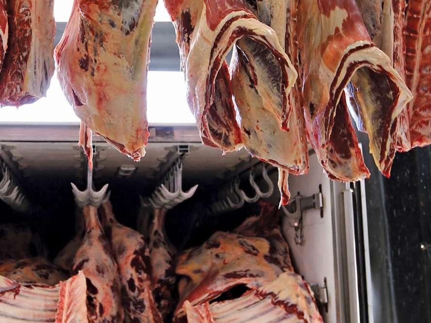 تامین ذخایر گوشت کشور با خرید تولید داخل