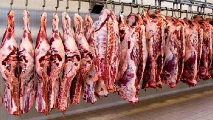 خرید اعتباری گوشت از برزیل