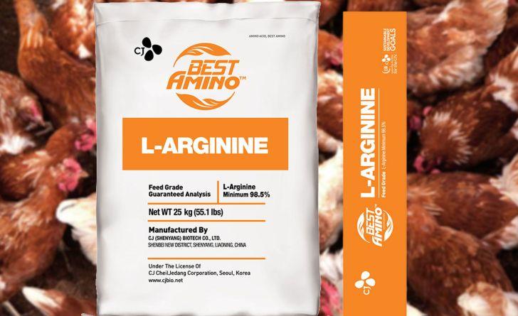 ال-آرژنین، نسل جدید اسیدآمینه ضروری در تغذیه طیور